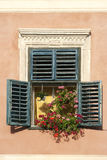 Window with flowers in brasov romania Royalty Free Stock Photo