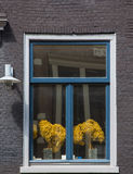 Window with flowers in a brick wall Stock Photography