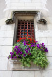 Window with flowers in a castle Stock Photos