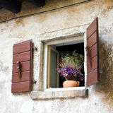 Window with Flowers, Dalmatia, Zadar, Croatia Royalty Free Stock Image