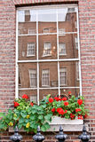 Window with flowers, Dublin, Ireland. White window with red flowers and the reflection of a red brick building, Baile Atha Cliath, Eire Stock Photo