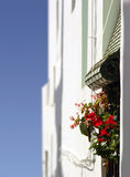 Window with flowers, geraniums Royalty Free Stock Images