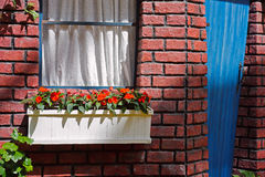 Window with a flowers hanging box Royalty Free Stock Image