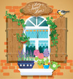 Window and flowers in pots, tomtit bird Royalty Free Stock Photos