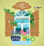Window and flowers in pots, tomtit bird Stock Photos