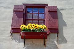 Window with flowers in renaissance city in europe Royalty Free Stock Photography