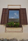 Window with flowers. On wall of the house Stock Photography