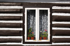 Window with flowers in wall of old wooden house Stock Images