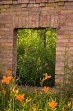 Window with flowers. A window into nature. royalty free stock photography