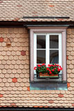Window and flowers. Windows in Strasbourg Stock Photography