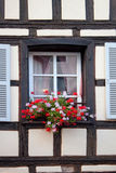 Window and flowers. Windows in Strasbourg Stock Images