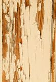 Window frame, paint peeling off royalty free stock photography