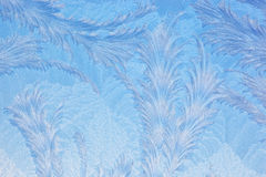 Window Frost Pattern. Frost forms in patterns on window glass on a cold winter morning Stock Images