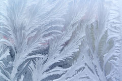 Window frost pattern on glass royalty free stock photos