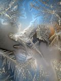 Window Frost, the Sparkling Magic stock image