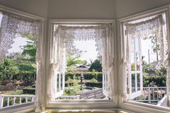 Window with a garden Royalty Free Stock Photography