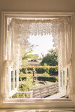 Window with a garden Stock Images