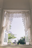 Window with a garden Royalty Free Stock Images