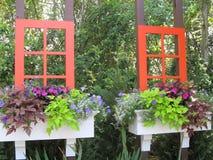 Window garden. A framed garden flower mix Stock Photos