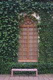 Window. In the garden with vegetation Stock Images