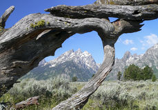 Window on Grand Teton Royalty Free Stock Images