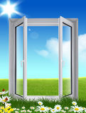 Window on the  grass. Window on the green grass with flowers Stock Image