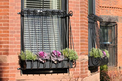 Window Grate on Brownstone House stock images
