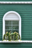 Window on green wall Stock Images