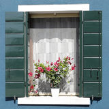 Window with green wooden shutters Stock Image