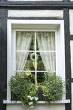 Window of half-timbered house with white flowers Stock Photos