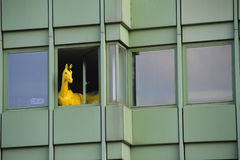 Window Horse. Horse in a window of an office building stock image