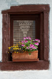 Window of a house in Eguisheim, Alsace, Royalty Free Stock Photos