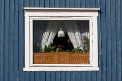 Window of a house in the north polar Stock Photos