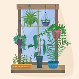Window with houseplants and flowers in pots. Flat cartoon style vector illustration stock illustration