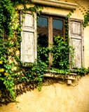 Window with ivied Royalty Free Stock Photo