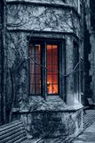 Window and ivy Stock Photos