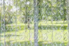 Window with lace curtains. Looking out to green summer park Stock Photo