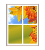 Window with a landscape autumn view, branch of rowan. Fall. Illu. Stration over white background. Vector Stock Photography