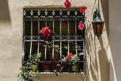 Window with lattice on Malta. Window decorated with fresh flowers with ornamental metal lattice on Malta Stock Photography