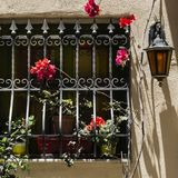 Window with lattice on Malta. Window decorated with fresh flowers with ornamental metal lattice on Malta Royalty Free Stock Images