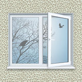 Window. Leopard print wallpaper and a bird outside the window Royalty Free Stock Photography