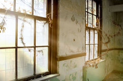 Window light. Taken at an old abandoned mental hospital Stock Photos