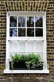 Window in London. Window with plant box in brick wall London Stock Photo