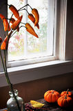 Window with mini pumpkin and orange peppers Royalty Free Stock Images
