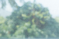 Window mosquito wire screen Royalty Free Stock Photo