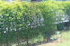 Free Window Mosquito Wire Screen Steel Net Protection Stock Photography - 98202632