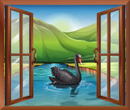 A window near the river with a goose Royalty Free Stock Photo