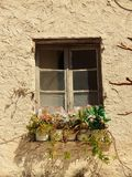 Window of an old building with flower pots in front Royalty Free Stock Images