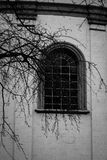 Window Of The Old Church Tree Branch Stock Photos