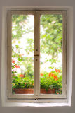Window, old house. Window in a old house